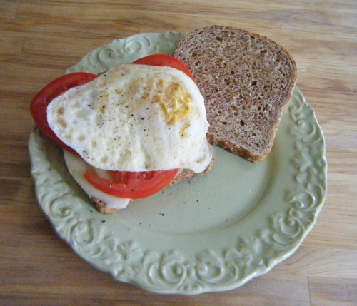 tomato, egg and cheese sandwich