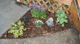 DIY mini flower garden