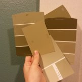Basement paint swatches. Out with teal, in with olive!
